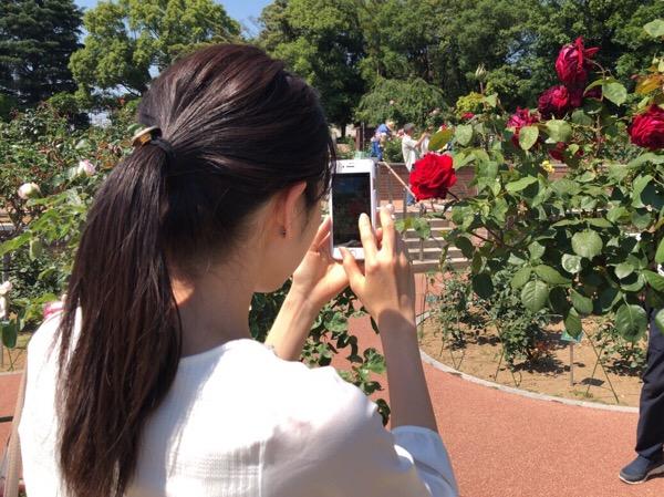 群馬県前橋市 敷島公園「春のばら園まつり」に行ってきました|ソフトクリームはだいたい200kcalです